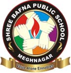 Shree Bafna Public School